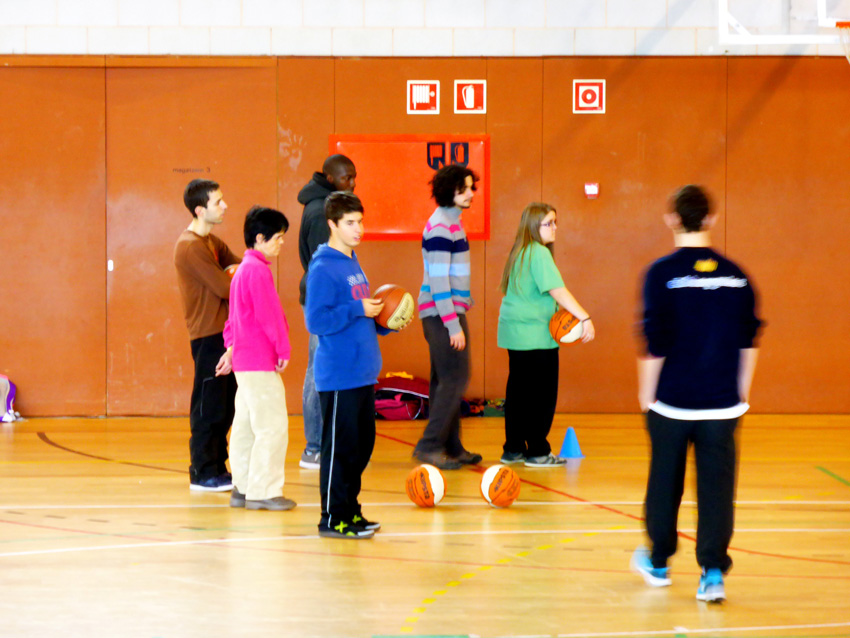53-basquet